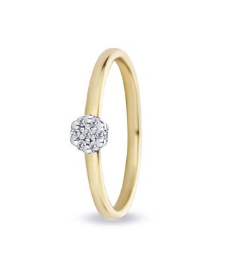 Miss Spring ring 18kt Entourage Isabel 0.07ct MSR542GG