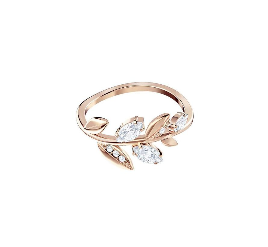 Mayfly ring rose