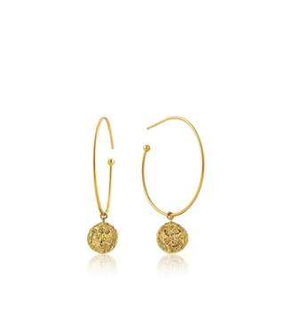 Ania Haie Coins Boreas Hoop earrings E009-03G