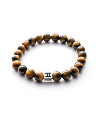 Gemini Gem Tiger Eye G1