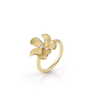 Annamaria Cammilli ring Bouquet GAN2839U