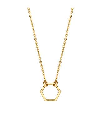 Lisamona Gold ketting 14kt geelgoud Hexagon G0028