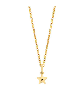 Lisamona Gold ketting 14kt geelgoud Star G0070