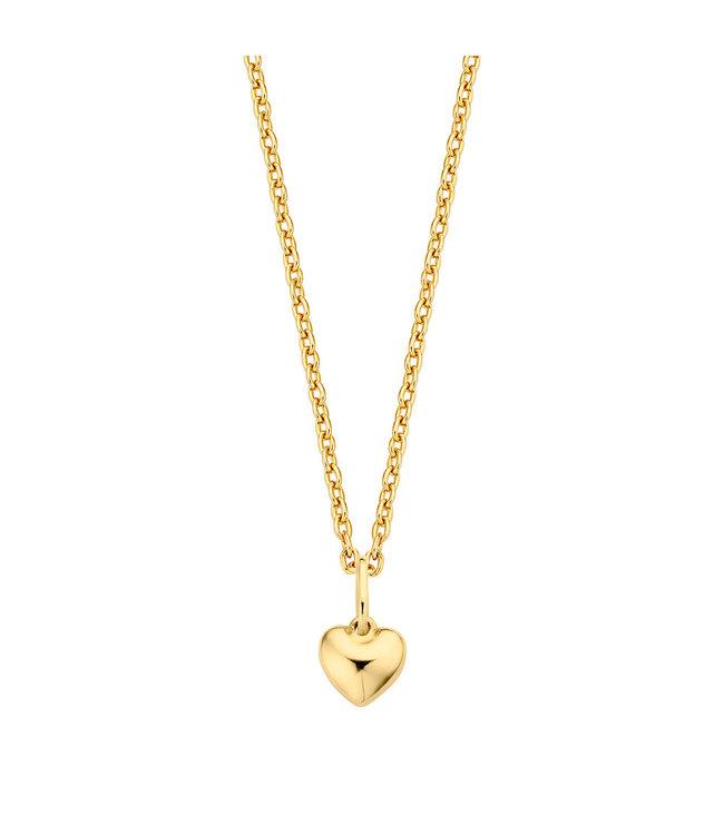 Lisamona Gold ketting 14kt geelgoud Heart G0071