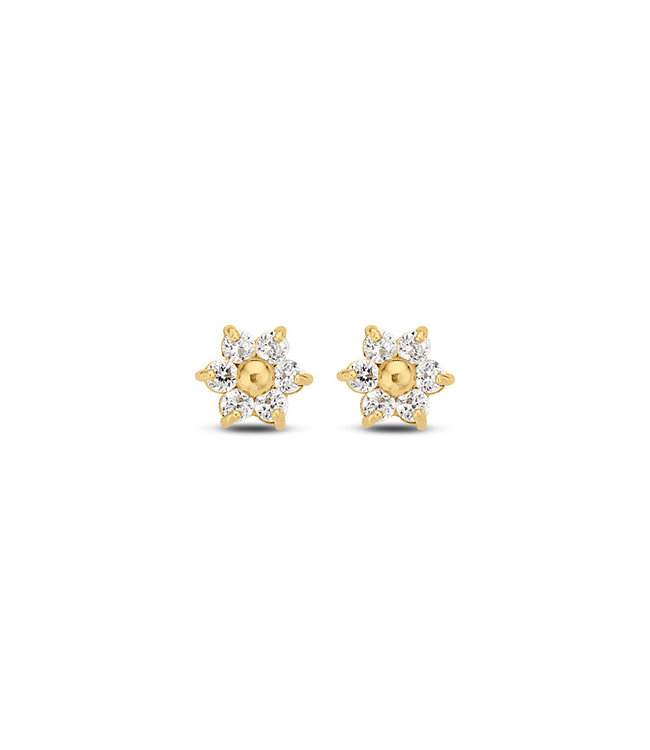 Lisamona Gold oorbellen 14kt geelgoud Star G0084