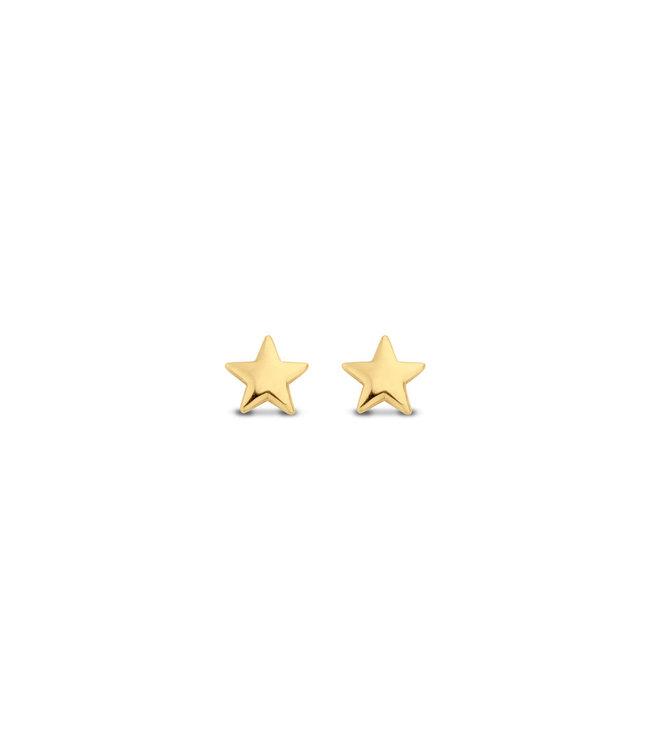 Lisamona Gold oorbellen 14kt geelgoud Star G0101
