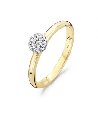 Blush ring 14kt 1131BZI