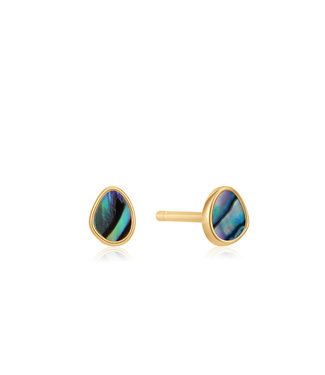 Ania Haie Turning Tides - Tidal Abalone stud earrings gold E027-04G