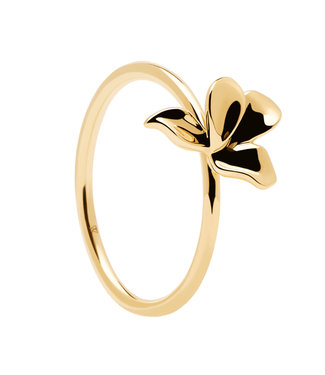 PDPaola ring Blossom - Narcise gold AN01-182