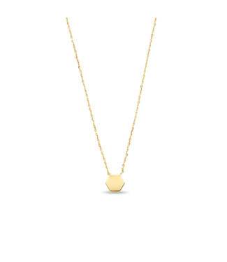 Lisamona Gold ketting 14kt Hexagon G0242
