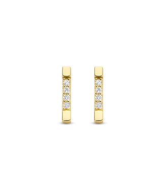 Lisamona Gold oorbellen 14kt geelgoud Rechthoek G0272