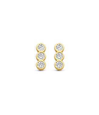 Lisamona Gold oorbellen 14kt geelgoud G0273