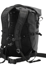 ORTLIEB Ortlieb Backpack Packman Pro Two
