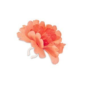 Peony Flower - Oranje