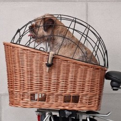 Bike baskets for dogs