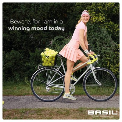 Basil Bold M Multi System - Fahrradkorb - hinten - schwarz