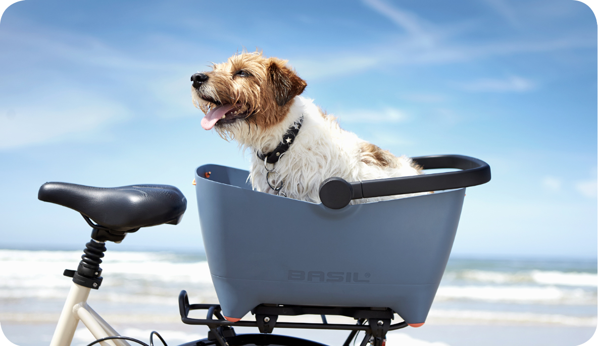 buddy hondenfietsmand lente