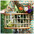 Basil Green Life -  Rattan Fahrrradkorb - Medium - vorne - natur braun