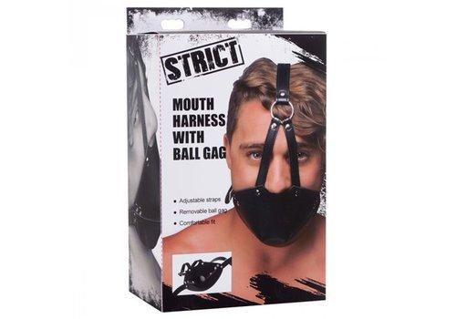 Mond Masker Met Ballgag