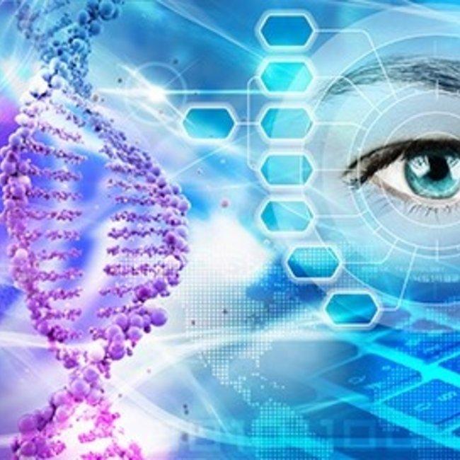 DNA-Expert Totaal