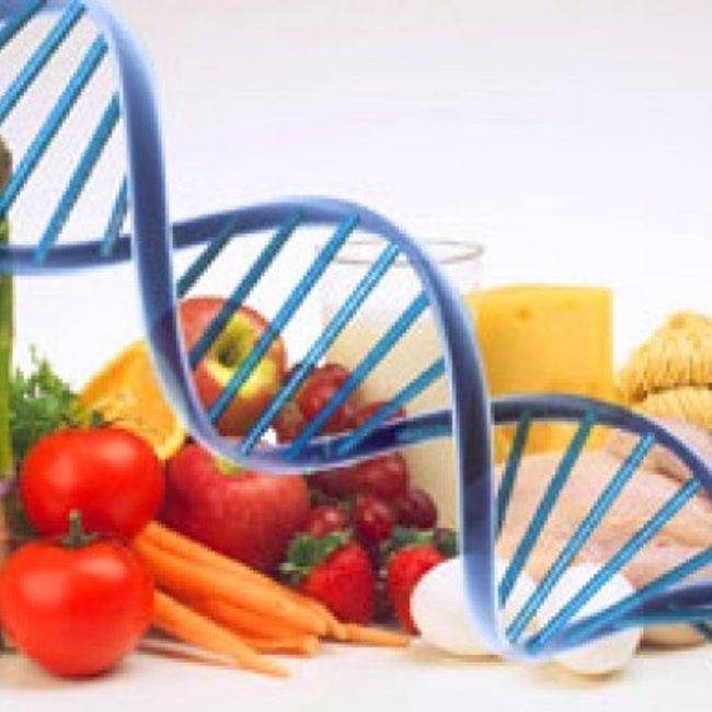 DNA-Expert Voeding