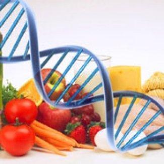 DNA-Nutricontrol Portal