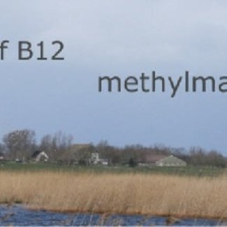 MMA vitamine B12 te kort Methylmalonzuur in Urine