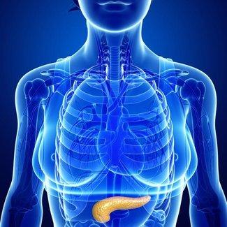 Pancreaselastase