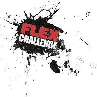 Flex Challenge test