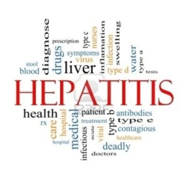 Hepatitis B - virus DNA