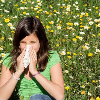 IgE  inhalatiemix 42 allergenen RP