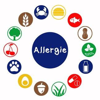 Allergietest overig