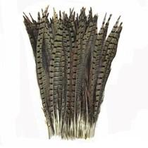 Fazant veren 50 stuks - 30 tot 35 cm