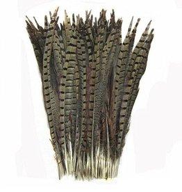 Janshop Fazant veren 50 stuks - 30 tot 35 cm