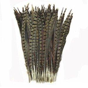 Janshop Fazant veren 10 stuks - 30 tot 35 cm