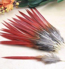 Janshop Rode goudfzant veren 100 stuks - 10 tot 14 cm