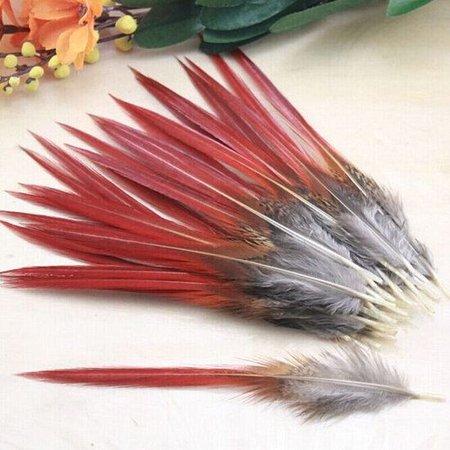 Rode goudfzant veren 100 stuks - 10 tot 14 cm