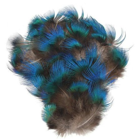 Pauwenveren blauw nek pluimen veren 50 stuks veertjes