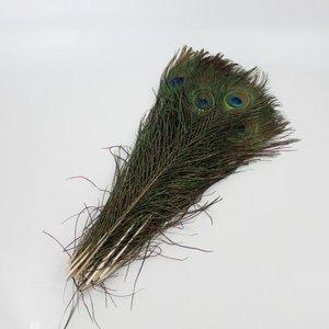 Janshop Pauwenveren met oog 20 stuks - 40 tot 45 cm