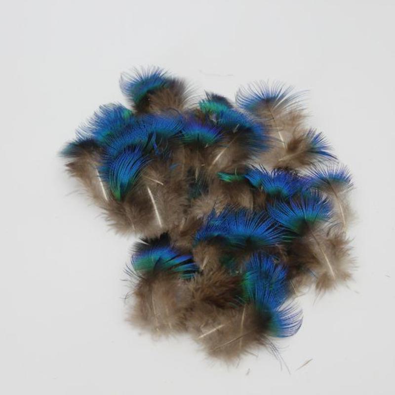 Janshop Pauwenveren blauw nek pluimen veren ongeveer 200 stuks veertjes