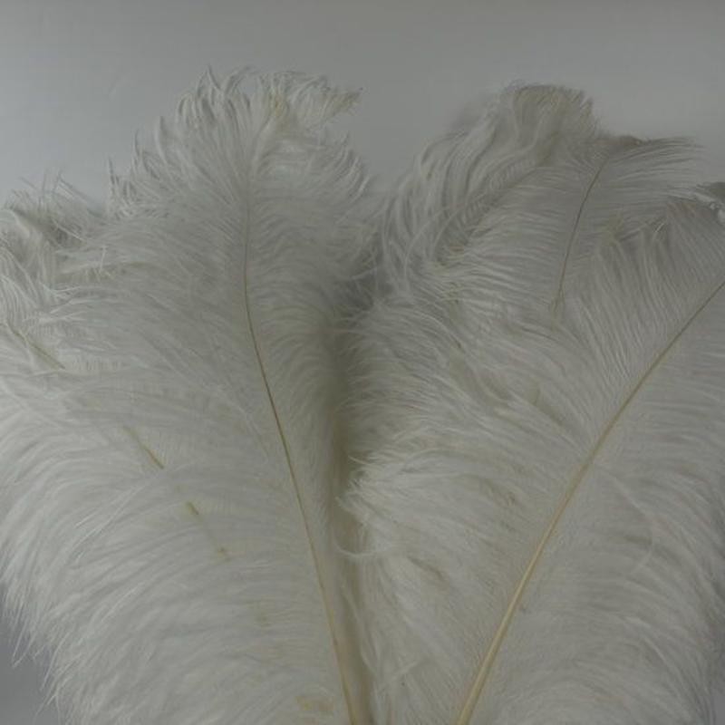 Struisvogelveren 1 stuks lengte ongeveer 65cm