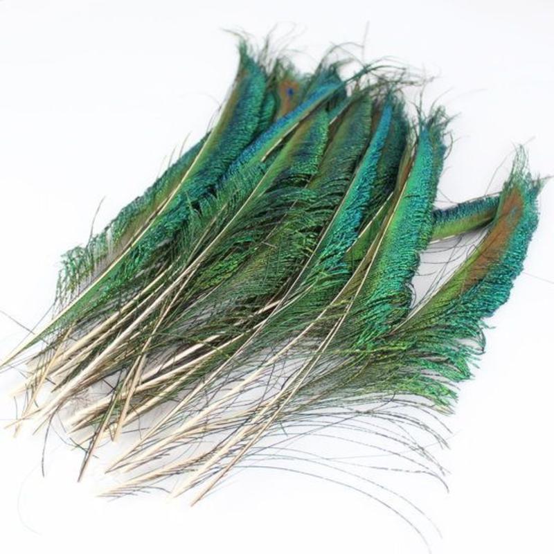 Zwaardveren pauw 50 stuks - 30 tot 35 cm