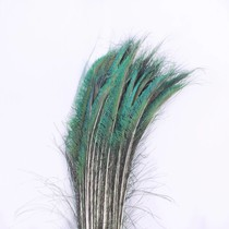 Zwaardveren pauw 10 stuks - 70 tot 80 cm