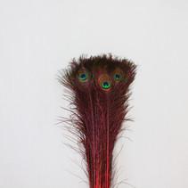 Pauwenveren 10 stuks - 70 tot 80 cm rood geverfd
