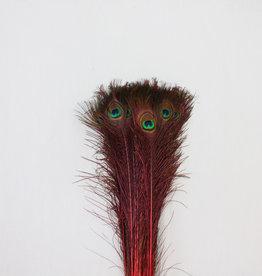Pauwenveren 20 stuks - 70 tot 80 cm rood geverfd