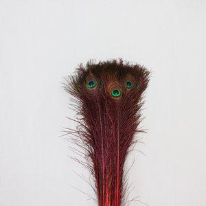 Janshop Pauwenveren 20 stuks - 70 tot 80 cm rood geverfd