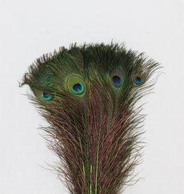 Pauwenveren 20 stuks - 70 tot 80 cm groen geverfd