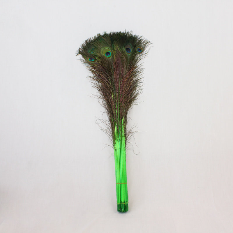 Janshop Pauwenveren 20 stuks - 70 tot 80 cm groen geverfd