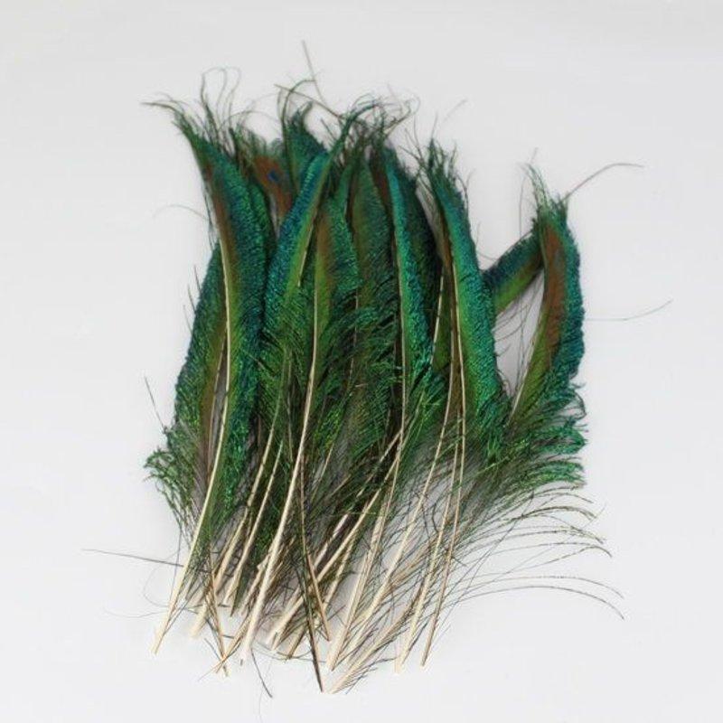Janshop Zwaardveren pauw 20 stuks - 25 tot 30 cm