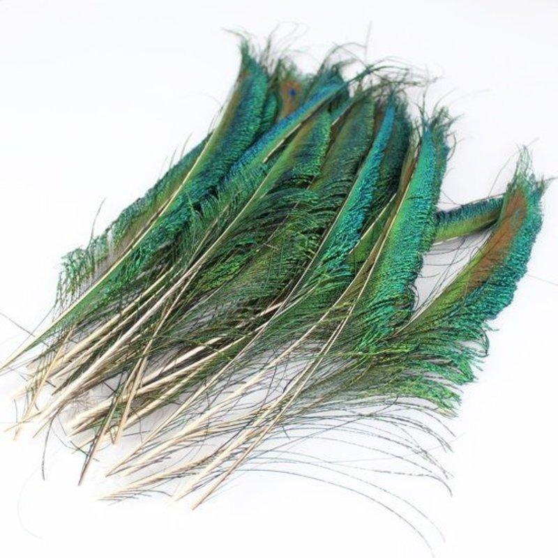 Janshop Zwaardveren pauw 10 stuks - 25 tot 30 cm